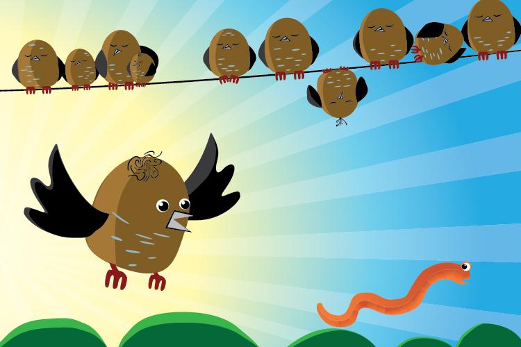 early avian species captures your earthworm essaytyper