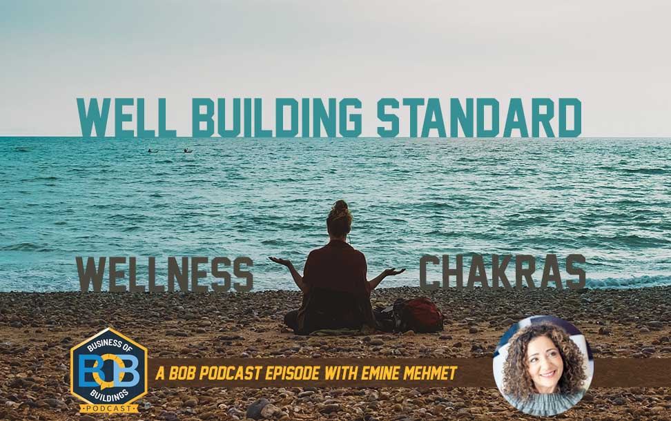 Emine Mehmet Discusses the Well Building Standard, Wellness and Chakras